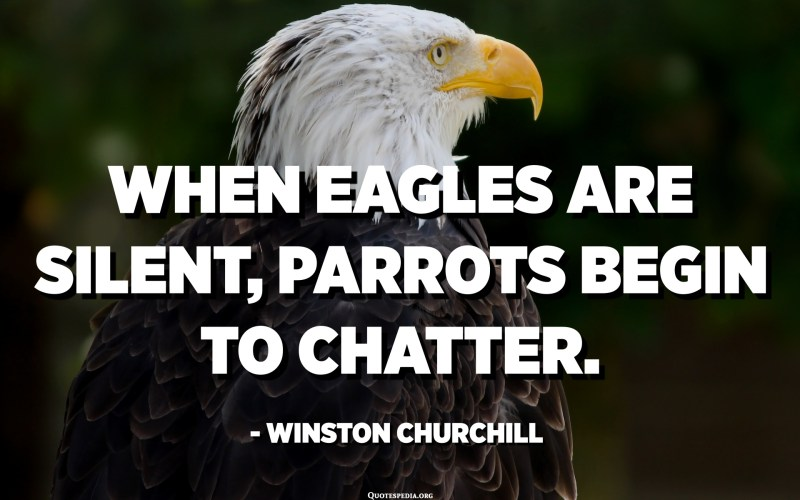 When eagles are silent, parrots begin to chatter. - Winston Churchill