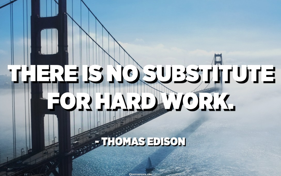 There is no substitute for hard work. - Thomas Edison