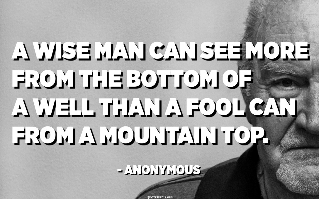 A wise man can see more from the bottom of a well than a fool can from a mountain top. - Anonymous