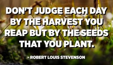 Don't judge each day by the harvest you reap but by the seeds that you plant. - Robert Louis Stevenson