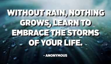 Without rain, nothing grows, learn to embrace the storms of your life. - Anonymous
