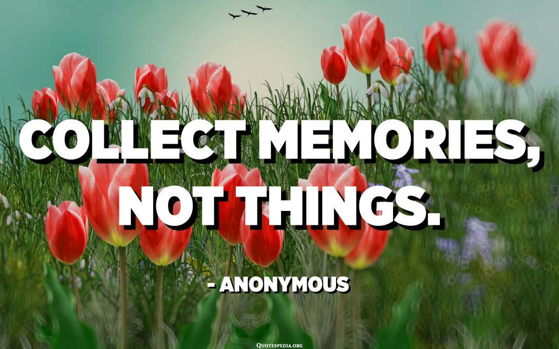 Collect memories, not things. - Anonymous