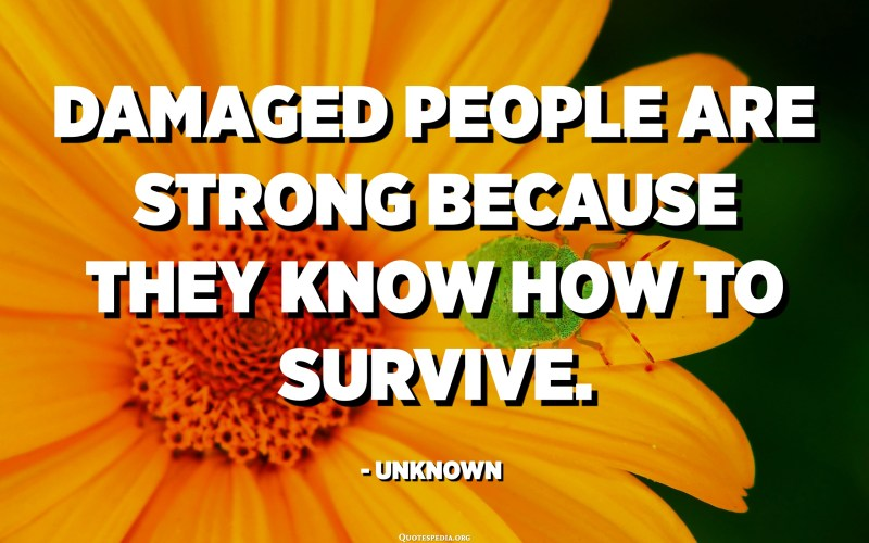 Damaged people are strong because they know how to survive. - Unknown