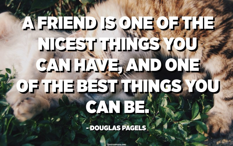 A friend is one of the nicest things you can have, and one of the best things you can be. - Douglas Pagels