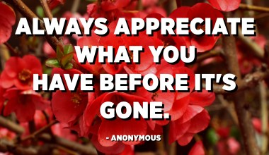 Always appreciate what you have before it's gone. - Anonymous