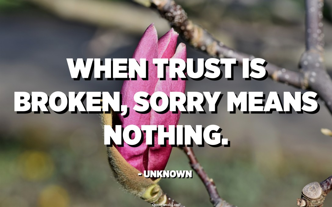 When TRUST is broken, SORRY means NOTHING. - Unknown