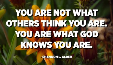You are not what others think you are. You are what God knows you are. - Shannon L. Alder