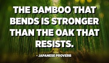 بامبو که خم می شود از بلوط مقاوم است. - ضرب المثل ژاپنی
