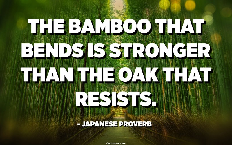 The bamboo that bends is stronger than the oak that resists. - Japanese Proverb