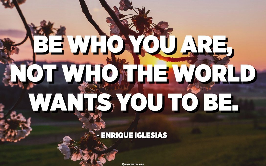 Be who you are, not who the world wants you to be. - Enrique Iglesias