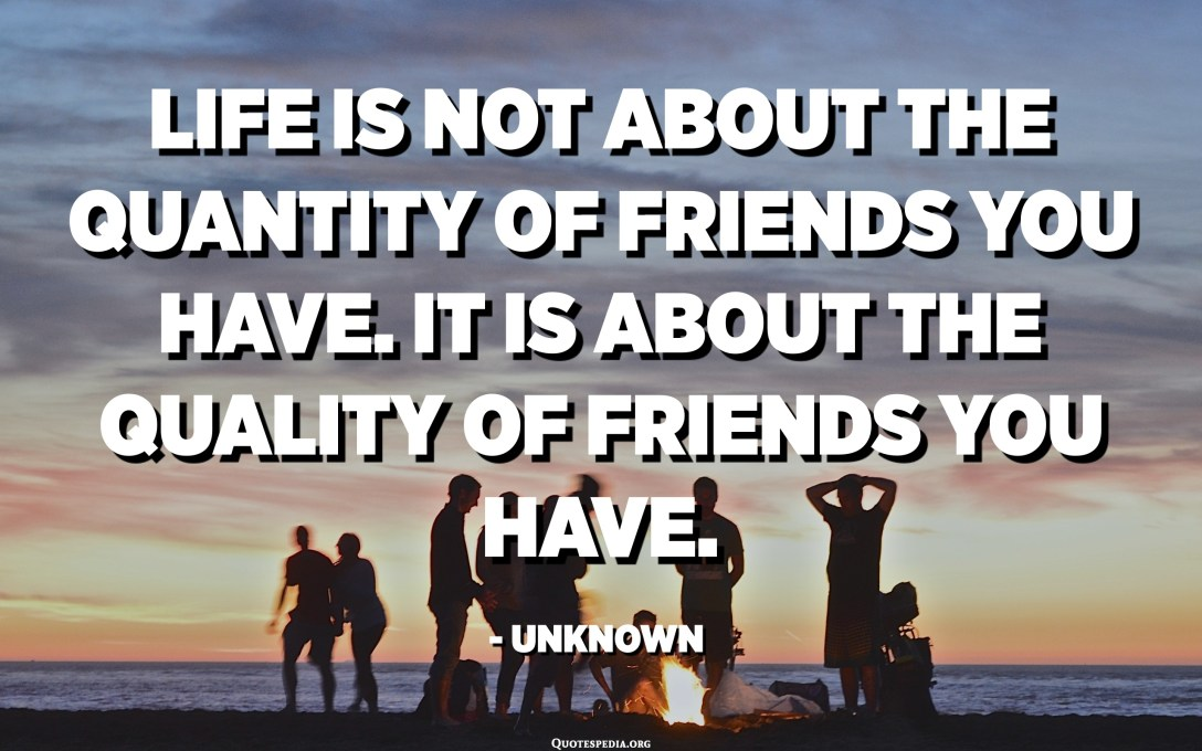 Life is not about the quantity of friends you have. It is about the quality of friends you have. - Unknown