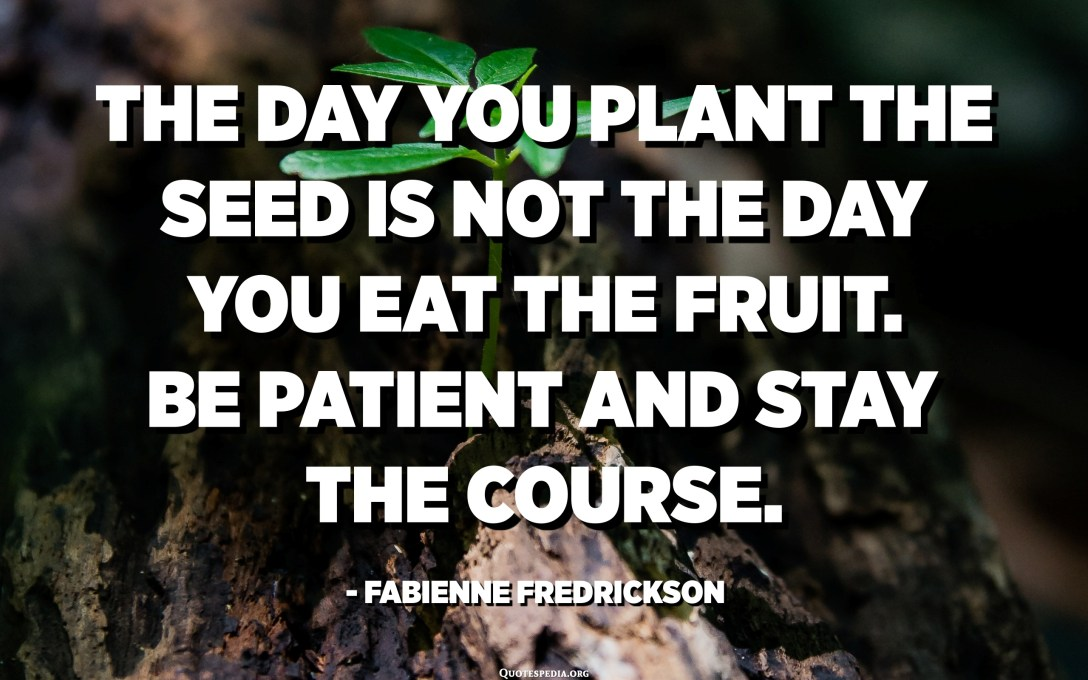 The day you plant the seed is not the day you eat the fruit. Be patient and stay the course. - Fabienne Fredrickson