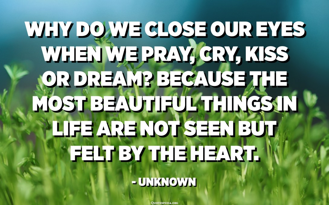 Why do we close our eyes when we pray, cry, kiss or dream? Because the most beautiful things in life are not seen but felt by the heart. - Unknown