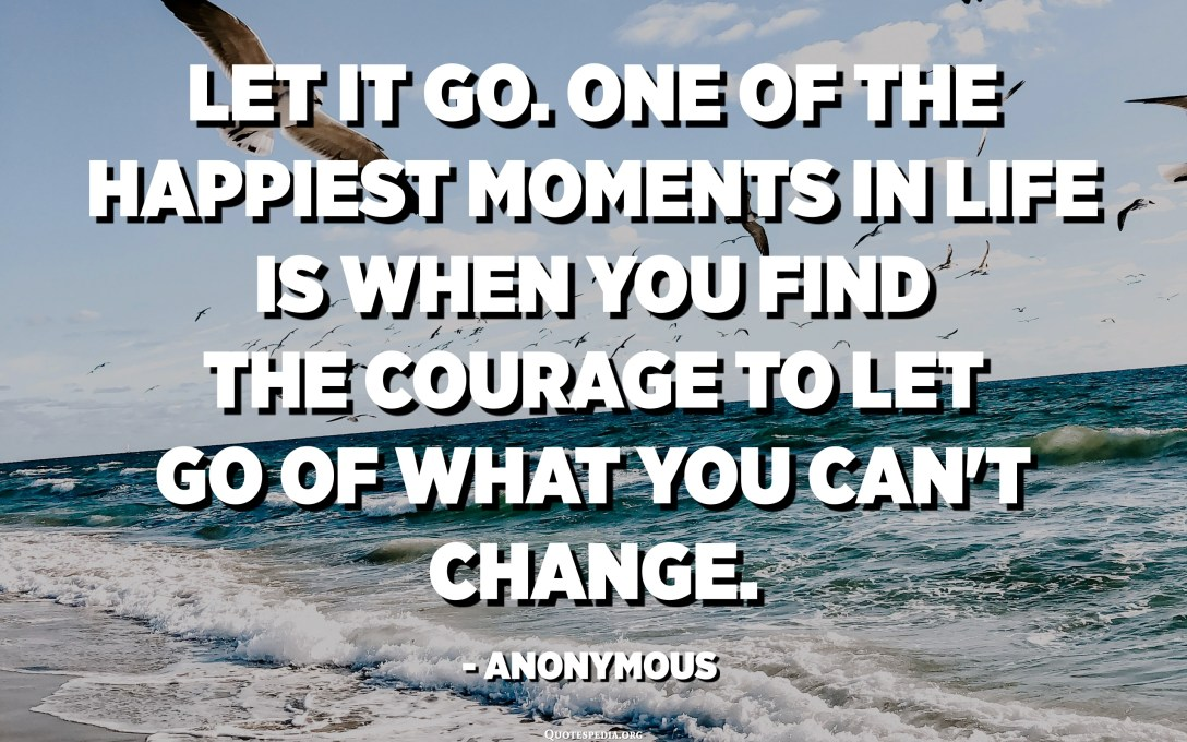 Let it go. One of the happiest moments in life is when you find the courage to let go of what you can't change. - Anonymous
