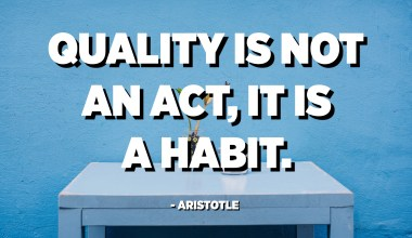 Quality is not an act, it is a habit. - Aristotle