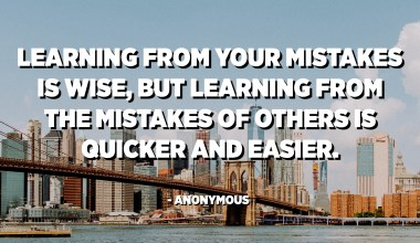 Learning from your mistakes is wise, but learning from the mistakes of others is quicker and easier. - Anonymous