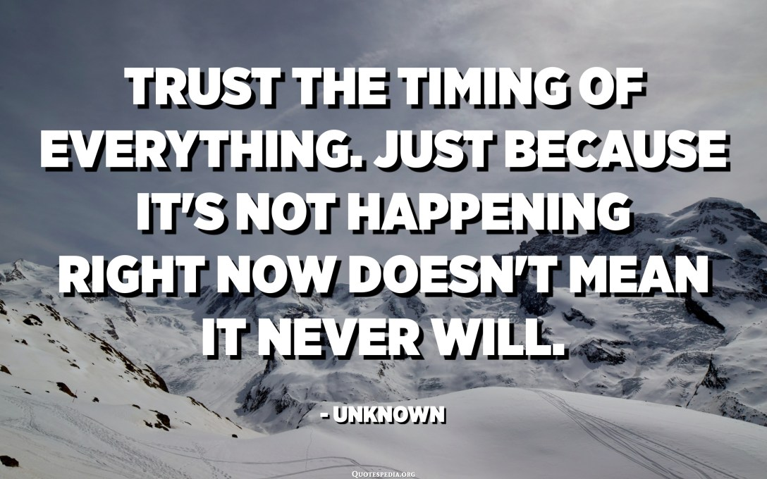 Trust the timing of everything. Just because it's not happening right now doesn't mean it never will. - Unknown