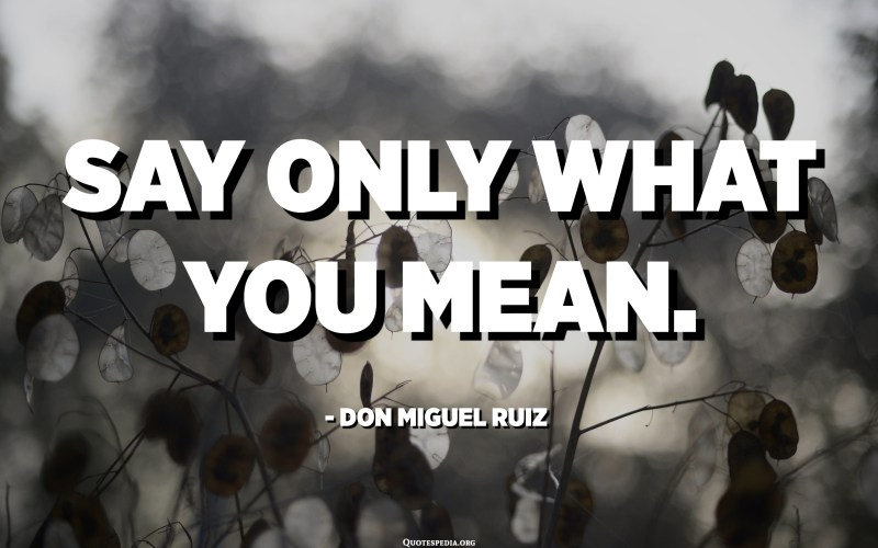 Say only what you mean. - Don Miguel Ruiz