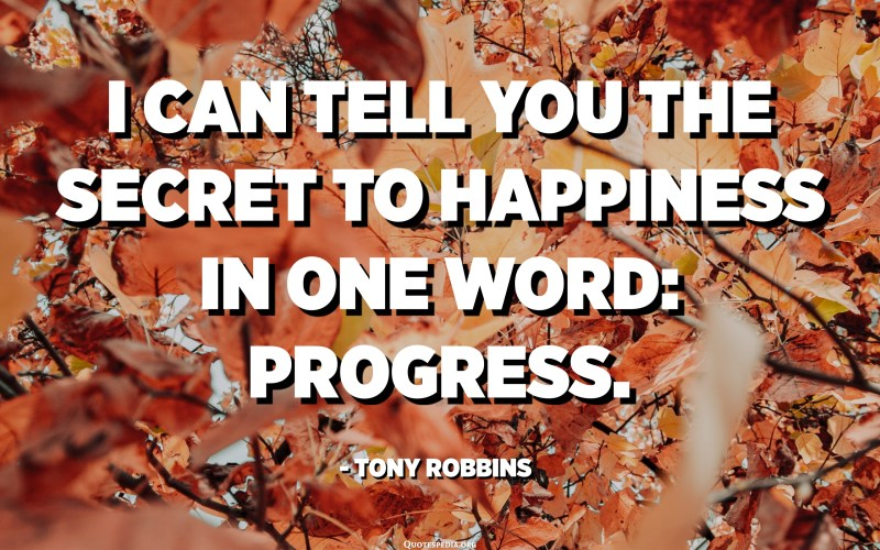 I can tell you the secret to happiness in one word: progress. - Tony Robbins