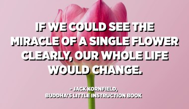 If we could see the miracle of a single flower clearly, our whole life would change. - Jack Kornfield, Buddha's Little Instruction Book