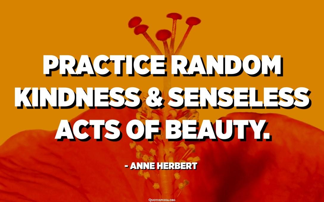 Practice random kindness and senseless acts of beauty. - Anne Herbert
