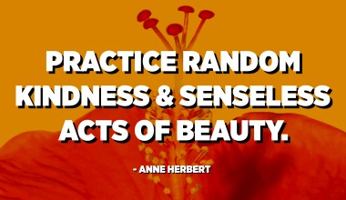 Practice random kindness and senseless acts of beauty. - Anne Herbert