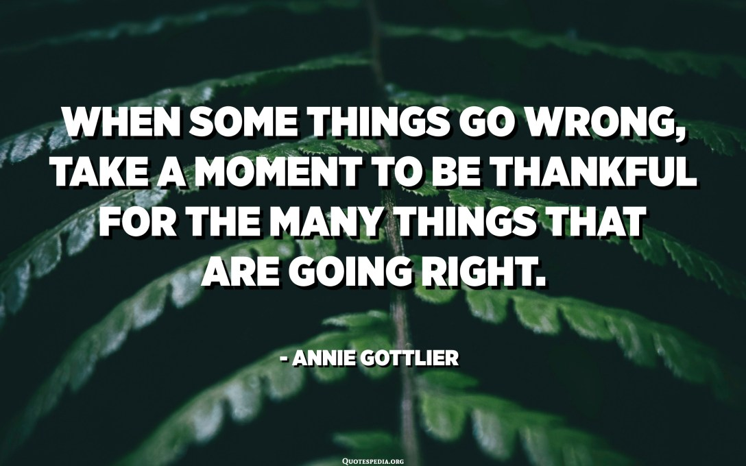 When some things go wrong, take a moment to be thankful for the many things that are going right. - Annie Gottlier