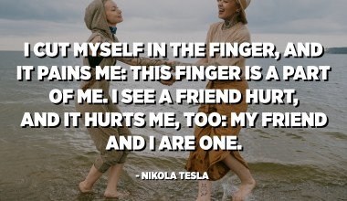 I cut myself in the finger, and it pains me: this finger is a part of me. I see a friend hurt, and it hurts me, too: my friend and I are one. - Nikola Tesla