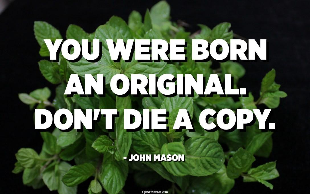 You were born an original. Don't die a copy. - John Mason