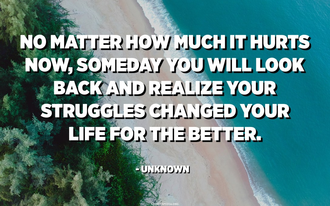 No matter how much it hurts now, someday you will look back and realize your struggles changed your life for the better. - Unknown