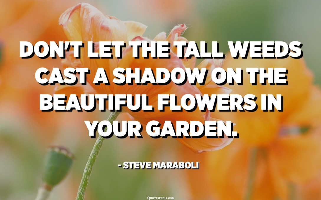 Don't let the tall weeds cast a shadow on the beautiful flowers in your garden. - Steve Maraboli