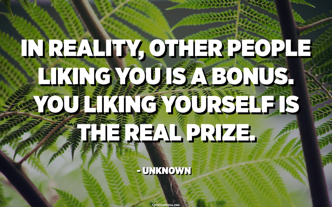 In reality, other people liking you is a bonus. You liking yourself is the real prize. - Unknown