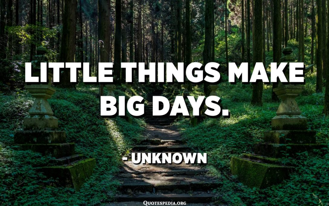 Little things make big days. - Unknown