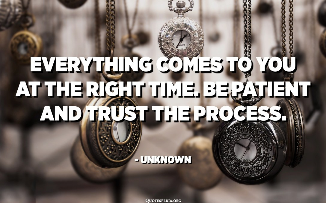 Everything comes to you at the right time. Be patient and trust the process. - Unknown