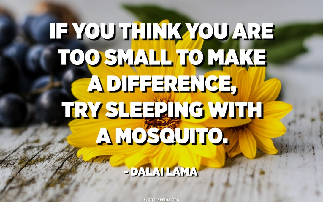 If you think you are too small to make a difference, try sleeping with a mosquito. - Dalai Lama
