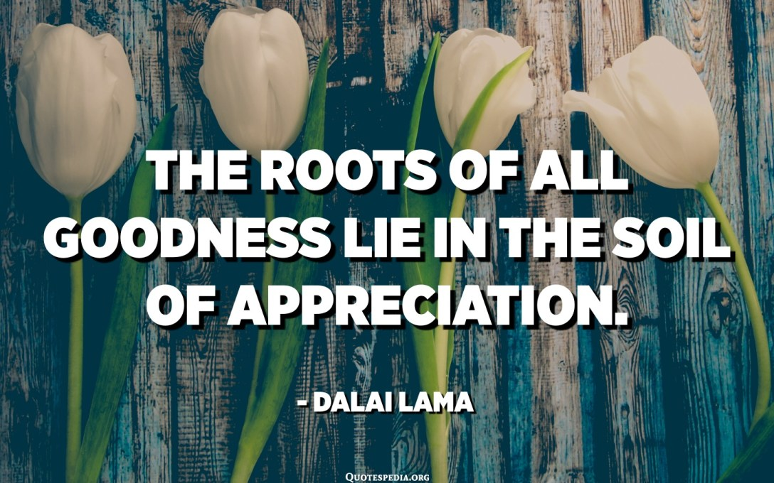 The roots of all goodness lie in the soil of appreciation. - Dalai Lama