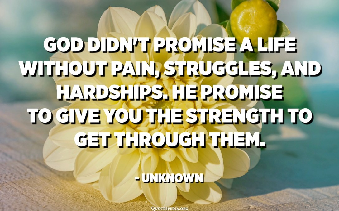 God didn't promise a life without pain, struggles, and hardships. He promise to give you the strength to get through them. - Unknown