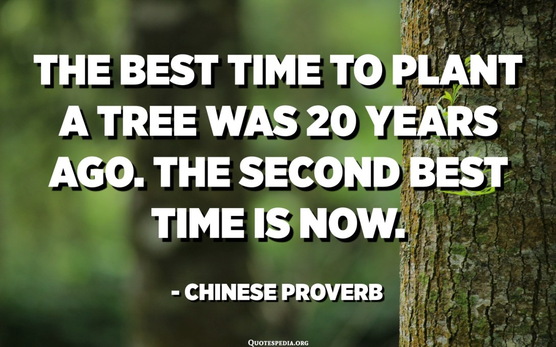 The best time to plant a tree was 20 years ago. The second best time is now. - Chinese Proverb