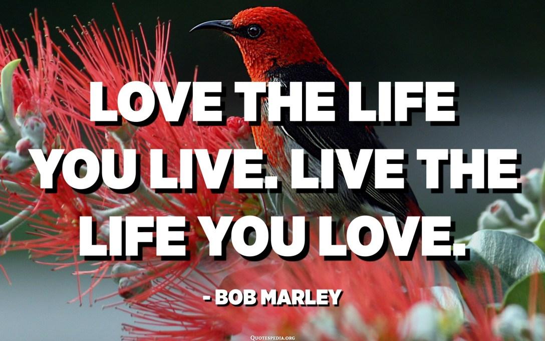 Love the life you live. Live the life you love. - Bob Marley