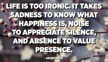 Life is too ironic. It takes sadness to know what happiness is, noise to appreciate silence, and absence to value presence. - Anonymous