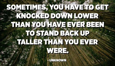 Sometimes, you have to get knocked down lower than you have ever been to stand back up taller than you ever were. - Unknown
