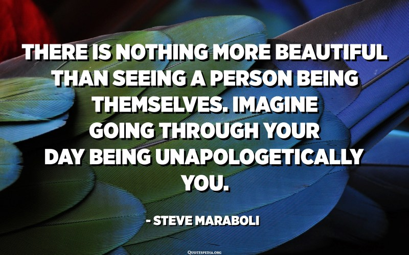 There is nothing more beautiful than seeing a person being themselves. Imagine going through your day being unapologetically you. - Steve Maraboli