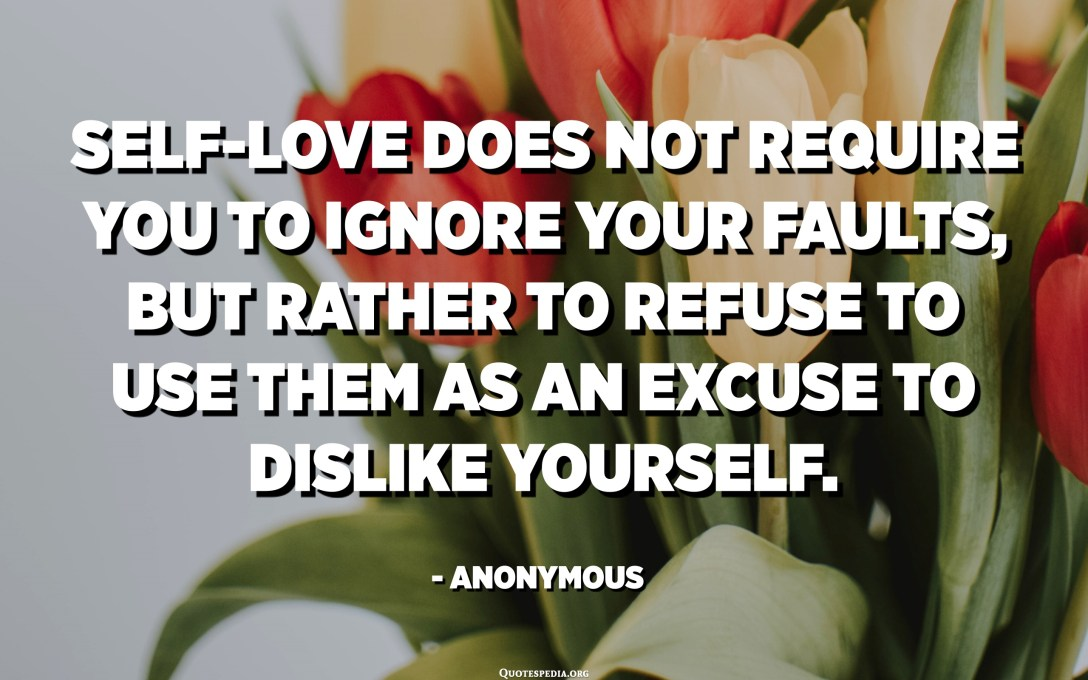 Self-love does not require you to ignore your faults, but rather to refuse to use them as an excuse to dislike yourself. - Anonymous