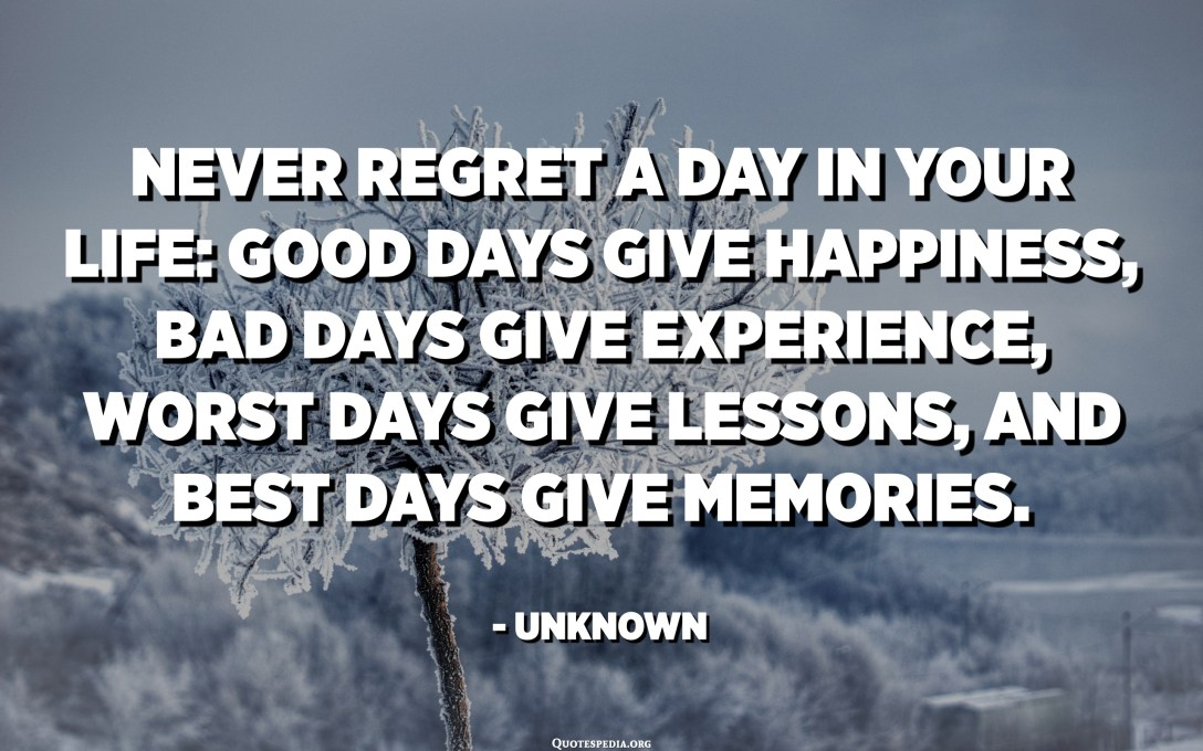 Never regret a day in your life: Good days give happiness, bad days give experience, worst days give lessons, and best days give memories. - Unknown