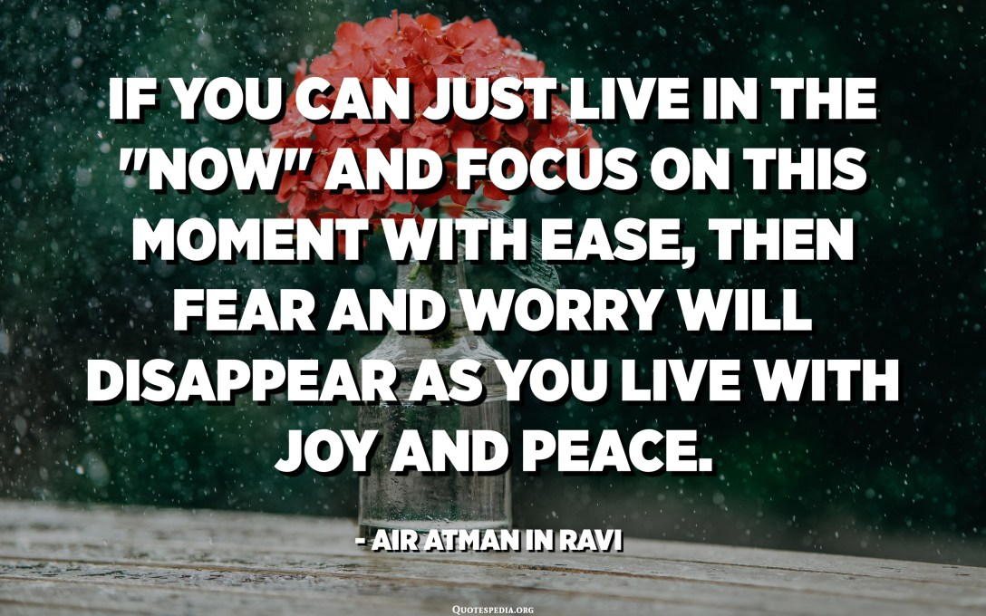 """If you can just live in the """"Now"""" and focus on this moment with ease, then fear and worry will disappear as you live with joy and peace. - AiR Atman in Ravi"""