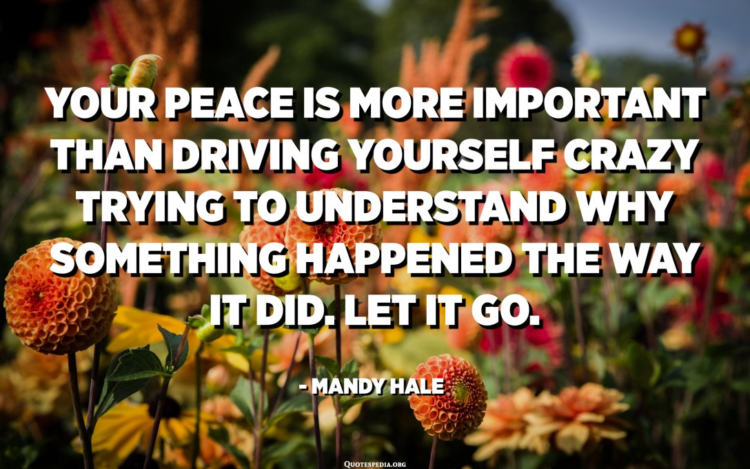 Your peace is more important than driving yourself crazy trying to understand why something happened the way it did. Let it go. - Mandy Hale