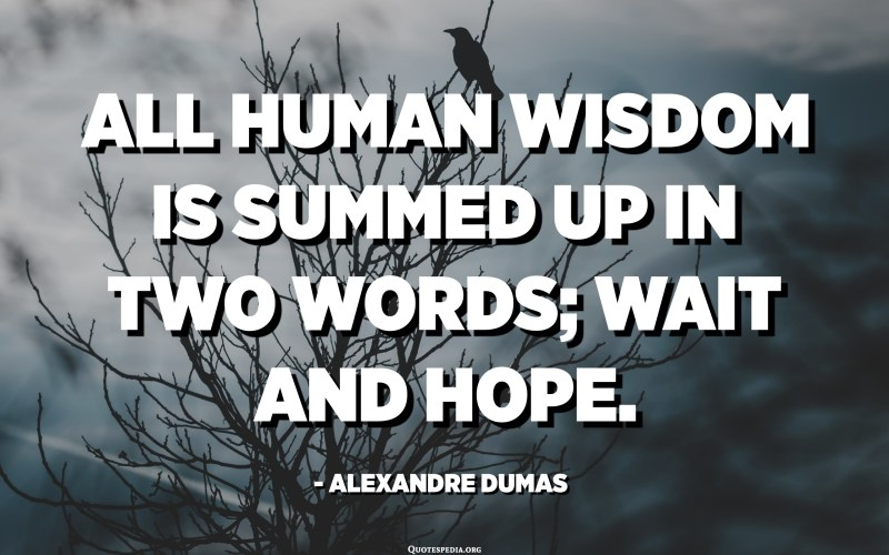 All human wisdom is summed up in two words; wait and hope. - Alexandre Dumas