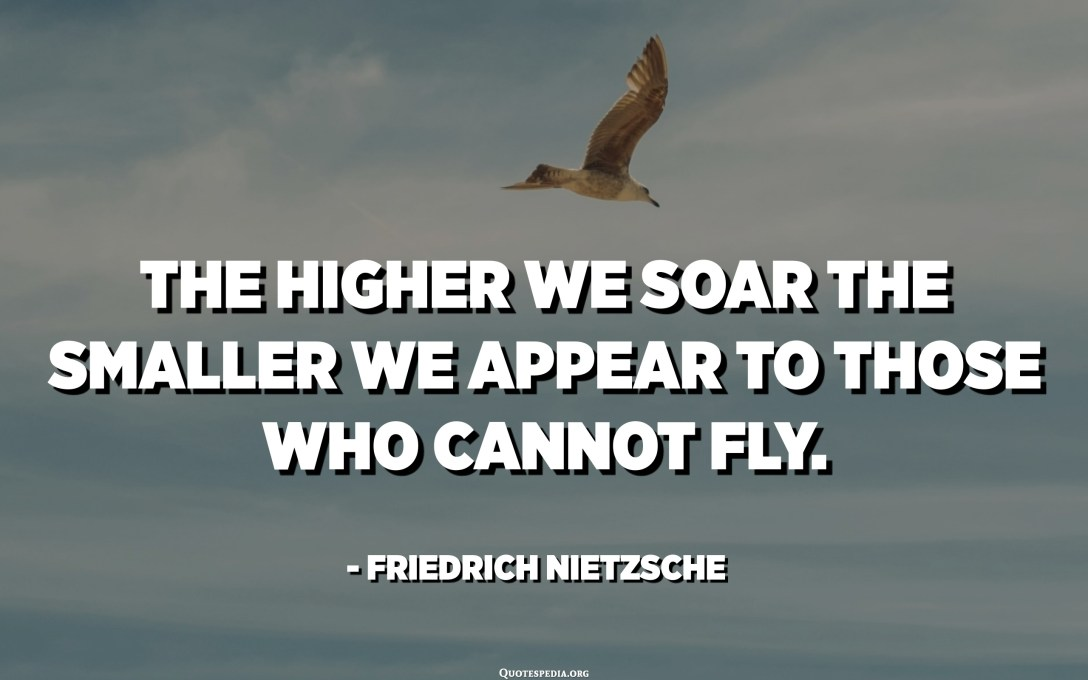 The higher we soar the smaller we appear to those who cannot fly. - Friedrich Nietzsche