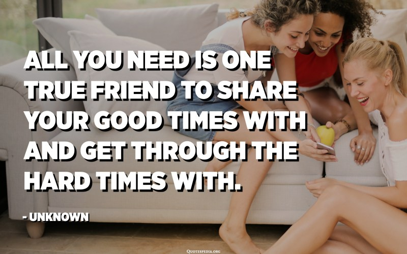 All you need is one true friend to share your good times with and get through the hard times with. - Unknown