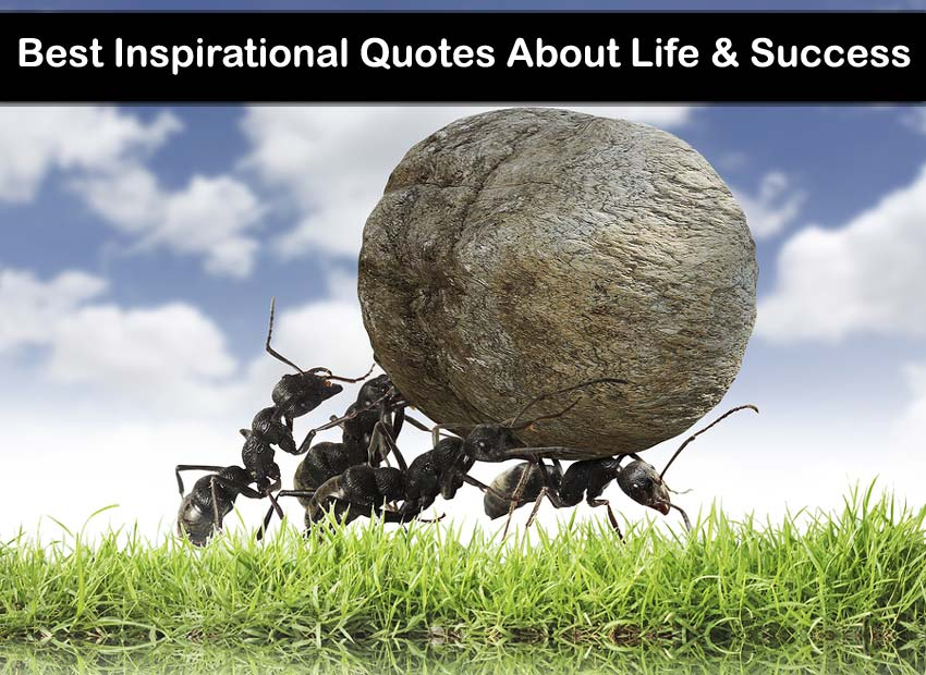 inspired-quotes-on-inspirational